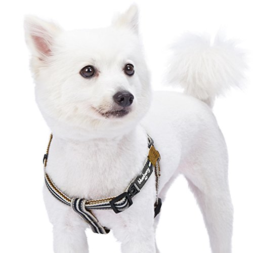 (Blueberry Pet 5 Colors Step-in 3M Reflective Multi-Colored Stripe Padded Dog Harness, Chest Girth 16.5