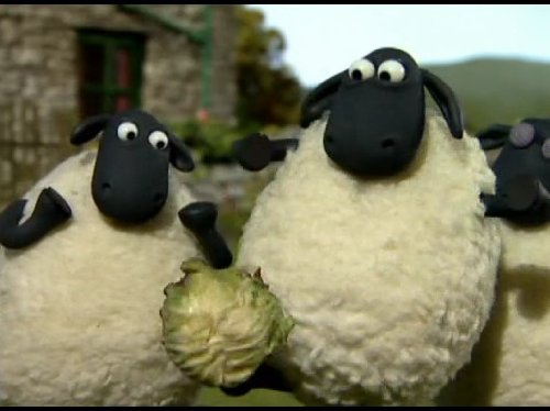 - E01 OFF THE BAA, E02 FETCHING, E13 LITTLE SHEEP OF HORRORS