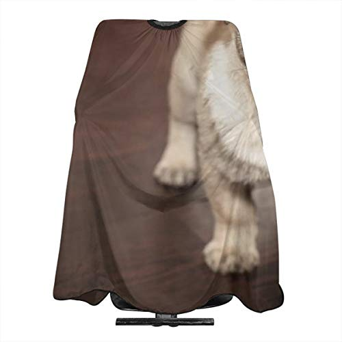 VIVIAN RICE Professional Salon Hair Cut Cape,Apron with Adjustable Snap Closure,Hairdressers and Barbers Dog Puppy Doggy,Easy Clean,Lightweight