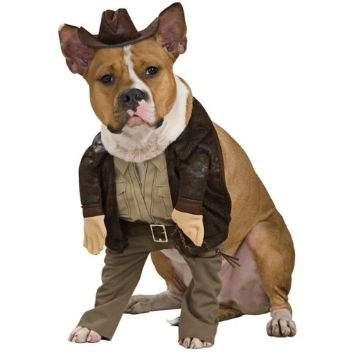 Indiana Jones Pet Costume (Indiana Jones Pet Costume, Large)
