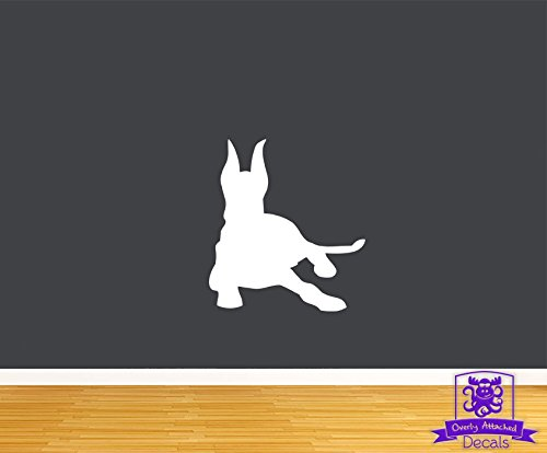 Overly Attached Decals Doberman pinscher lying down 45
