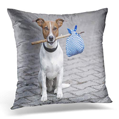 Baggage Car Streamlined - Emvency Throw Pillow Cover Pet Blue Lost Dog Stick and Brown Travel Puppy Decorative Pillow Case Home Decor Square 18