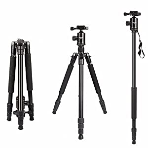 Camera Tripod, HolaFoto 65'' Travel Monopod Light Weight Aluminum alloy legs &Panorama Ball head for DSLR Camera Canon Nikon Sony Fuji-Film, Pentax, Lumix, Olympus DSLR DV- T2 Black