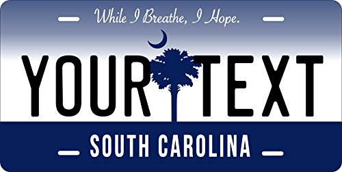 (50 State Personalized Custom Novelty Tag Vehicle Auto Car Bike Bicycle Motorcycle Moped Key Chain License Plate (South Carolina 2016))