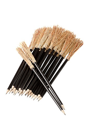 25 Pencil Broom 9.80
