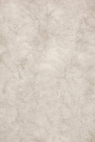 Backdrop Alley Whitewash Crush Muslin Photo Background, 10' x 12' by Backdrop Alley