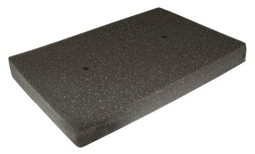 Ninja Air Box (Hiflofiltro HFA2505 Premium OE Replacement Air Filter)