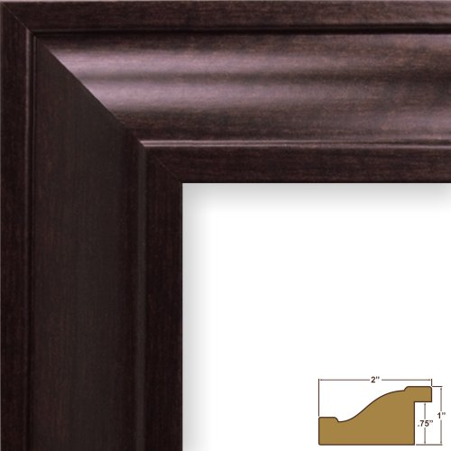 Craig Frames 76036 8 by 10-Inch Picture Frame, Smooth Wood Grain Finish, 2-Inch Wide, Brazilian Walnut Brown New Contemporary Walnut Finish Wood