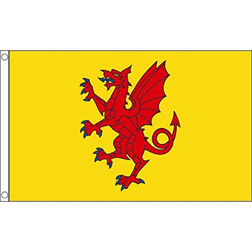 (AZ FLAG Somerset New County Flag 2' x 3' - County of Somerset - England Flags 60 x 90 cm - Banner 2x3 ft)