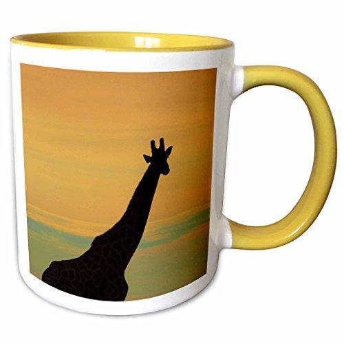 (3dRose Danita Delimont - David Wall - Giraffe - Silhouette of Giraffe, Nxai Pan NP, Botswana, Africa - 15oz Two-Tone Yellow Mug (mug_187908_13))