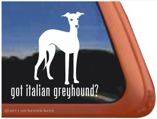 Got Italian Greyhound? Vinyl Window Dog Decal Sticker