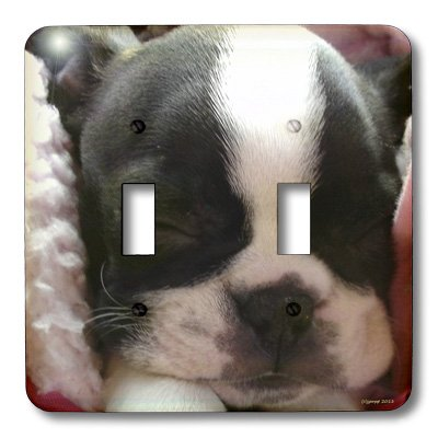 3dRose lsp_22237_2 Boston Terrier Puppy Double Toggle Switch