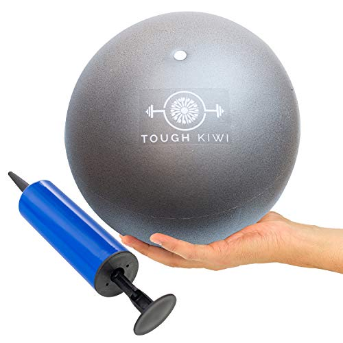 - Tough Kiwi 9 Inch Pilates Ball with Pump - Mini Exercise Ball for Home Fitness | Use for Home Fitness, Stability, Barre, Pilates, Yoga, Core Training or Physical Therapy (Silver)