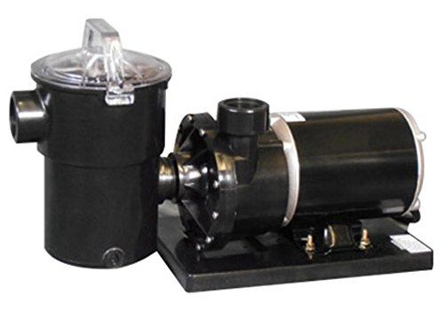 Rx Clear Niagara Pool Pump For Above Ground Pools
