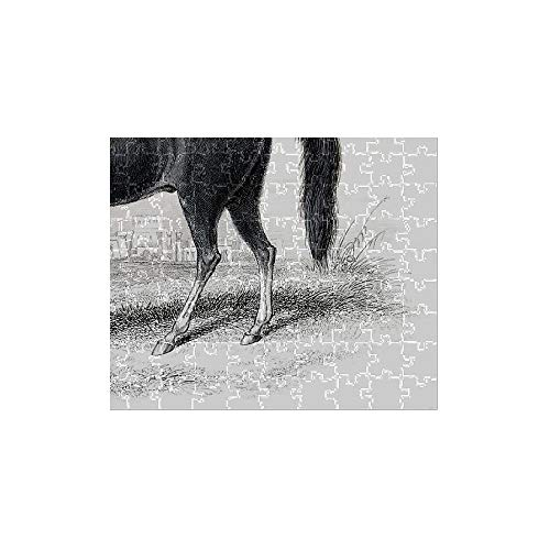 Media Storehouse 252 Piece Puzzle of Dongola Race Horse 1841 (13612923)