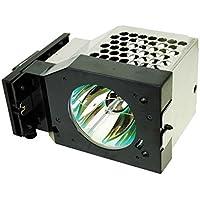 Panasonic TY-LA2004 RPTV Lamp Replacement