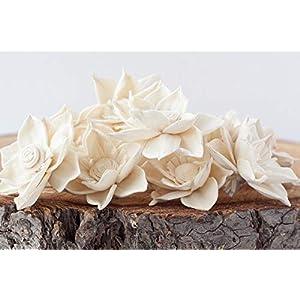 """Bloem, Inc. Delphinium Sola Flowers, 2"""" Size, Set of 10 34"""