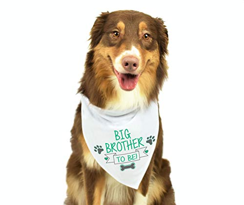 (Moowake Designs Big Brother Dog Bandana, Pregnancy Announcement Dog Bandana, Gender Reveal Photo Prop, Pet Scarf, Pet Accessories)