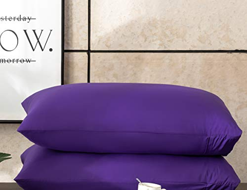 AYASW Pillowcases Queen Size Microfiber 2 Piece Set Envelope Closure Purple 20x30 inches