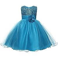 Hoge kwaliteit Meisje kleding, pailletten glans netto garen prinsessenjurk, rollenspel bloemenmeisje bruidsmeisje jurk…