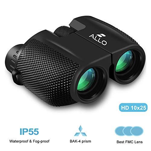 Binoculars for Adults,High Power Low Light Night Vision Compact Binocular,10x25 Folding Waterproof HD Binoculars for Bird Watching,Hunting,Sports Events,Travel,Adventure & Concerts (Deep Black)