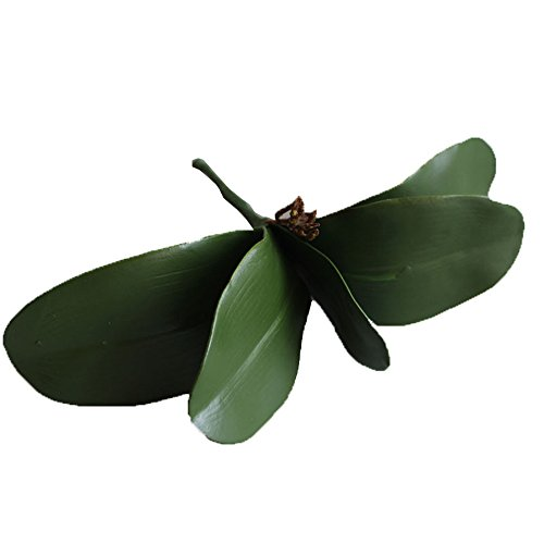 Baby And Toddler Petal Power Costumes (Conjugal Bliss 3PCS High Simulation Plant 5 Pieces Phalaenopsis Leaves Handle Banana Leaf Artificial Flowers Home Furnishing Hotel Party Wedding Wedding Decoration Flowers (green))