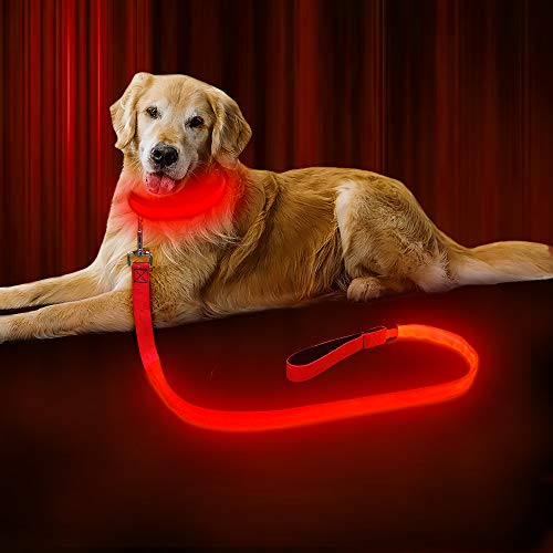 BSEEN LED Dog Leash - USB Rechargeable 47.2 inch 120 cm Night Safety Pet Leash LED Strip to Keep You and Your Dog Safe (Fluorescent Red)