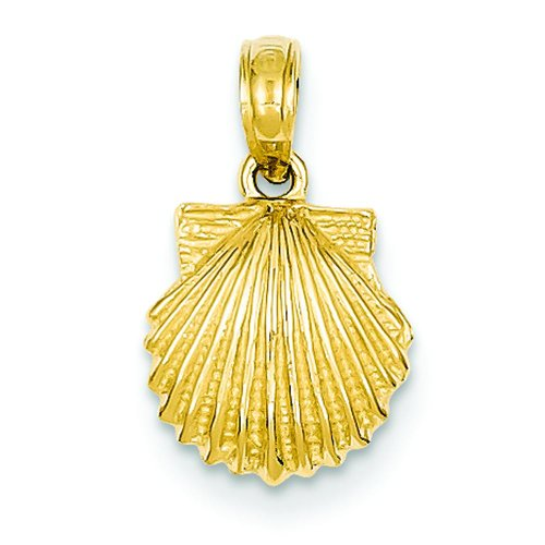 14k Gold Clamshell - 8