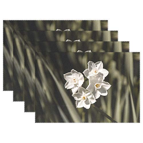 (Jonquils Flowers White Blooms Bulbs Garden Spring Placemats Heat Insulation Stain Resistant for Dining Table Durable Non-Slip Kitchen Table Place Mats Set of 4)
