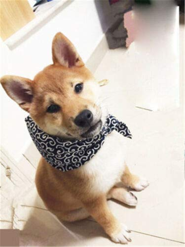 - FidgetKute Handmade Red Cat Neck Pet Dog Shiba Inu Necklace Baggage Neckerchief Cosplay Toy Blue(Sharp Corner) M(Length 80cm)