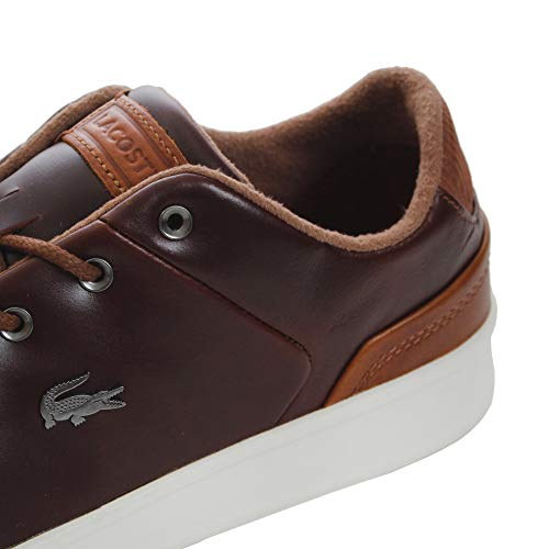 Explorateur Lacoste Classic Lacoste Marrone Sneaker Sneaker t5H6zw11q