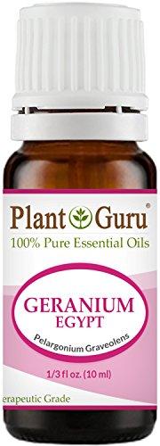 Geranium Egypt Essential Oil 10 ml 100% Pure Undiluted Therapeutic Grade.