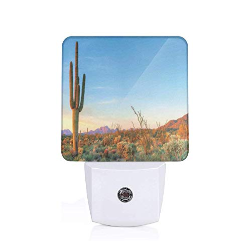 Colorful Plug in Night,Sun Goes Down in Desert Prickly Pear Cactus Southwest Texas National Park,Auto Sensor LED Dusk to Dawn Night Light Plug in Indoor for Childs Adults