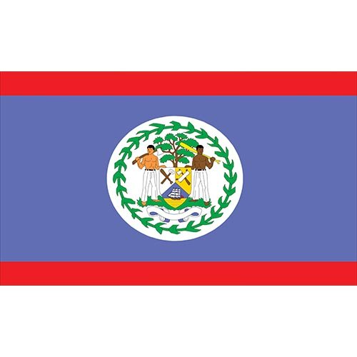 WGH11020 Belize Flag Vinyl Wall Decal ()