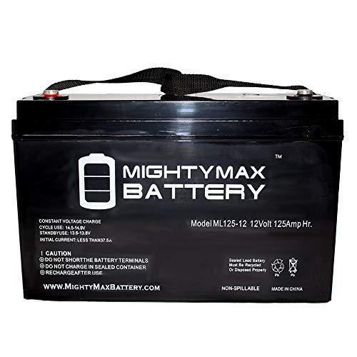 12v 125ah deep cycle battery - 4