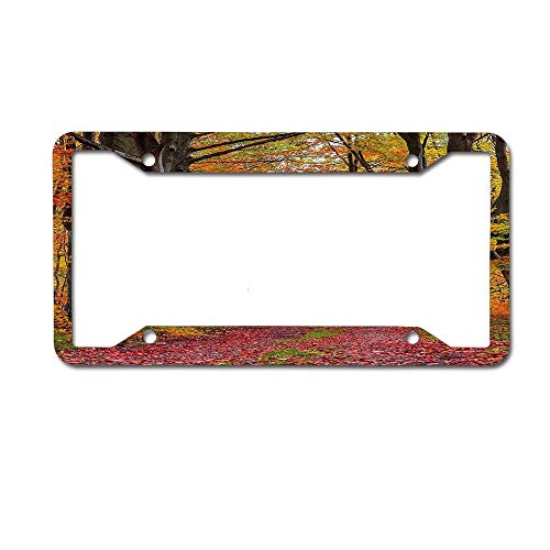 TysoOLDPhoneC Autumn Fall Forest Shady Deciduous Trees Faded Leaf Magic Woodland Picture Apricot Brown Red License Plate Frame Aluminum Protector Car Tag Frame 4 Holes ()