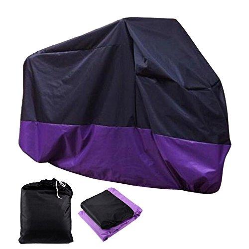 purple chopper - 4