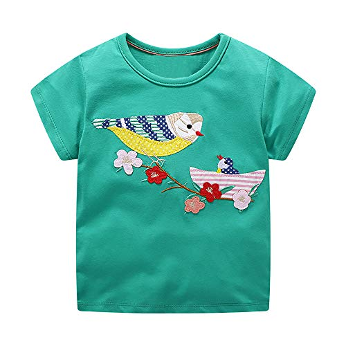 DYW Toddler Girls Short Sleeve T-Shirt Round Neck Cute Graphic Cotton Tees 2-7 Years (Bird Embroidery, 4T)