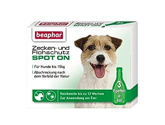 Zeckenschutz für Hunde Bild