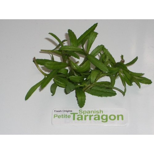 Petite Greens - Tarragon Spanish - 4 x 4 oz by For The Gourmet
