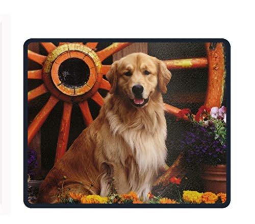 Labrador Retriever Mix ¡¡Mouse Mat,Premium Rectangle for sale  Delivered anywhere in USA