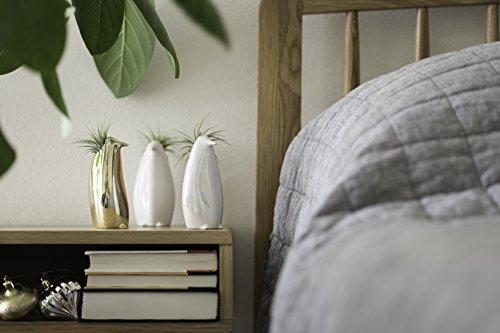 LiveTrends Design Royal Penguin, 2
