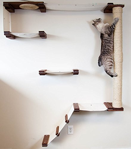 CatastrophiCreations Cat Mod Climb Track Handcrafted Wall mounted Cat Tree Shelves, Onyx/Natural, One Size by CatastrophiCreations