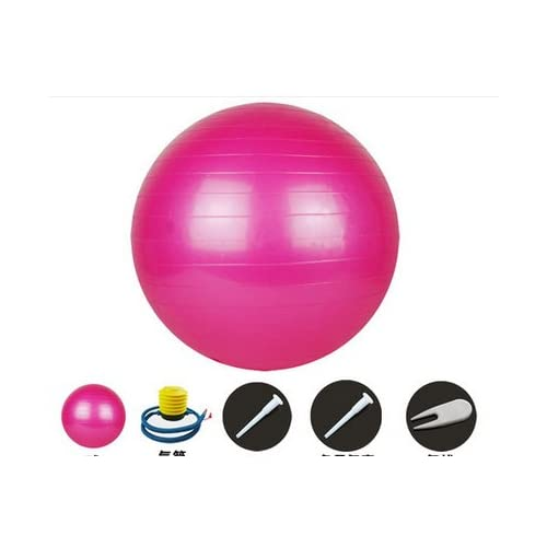 Samgu Ballon de gym Gymnic Ballon de Fitness/Grossesse Swiss Ball Gymnastique Aérobic Rose 75cm