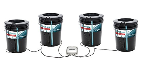 Root Spa 4 Bucket System, 5 gallon by Hydrofarm
