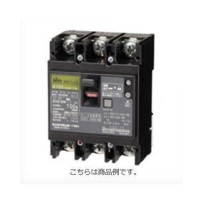 日東工業 漏電ブレーカ(協約形) GE102CA2P100AF30 B074XFL9HY  GE102CA2P100AF30