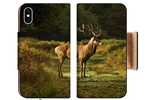 MSD Apple iPhone XS Flip Pu Wallet Case Magnificent red Deer stag Prowling During rut Season Image 8530394 Customized Tablemats