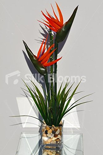 Bird Of Paradise Display - Modern Artificial Orange Bird of Paradise Table Vase Display with Bamboo