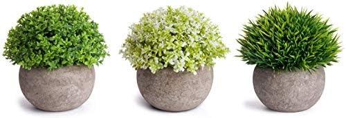 MoonLa 人工観葉植物 造花 フェイクグリーン お世話のいらない 癒しのグリーン インテリア プレゼント プラスチック製 5点セット