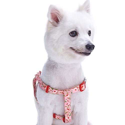 Blueberry Pet 7 Patterns Step-in Spring Scent Inspired Floral Rose Baby Pink Dog Harness, Chest Girth 16.5